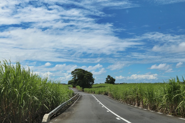 The adventure of driving on Mauritius in a rental car