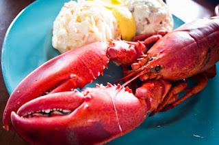 gambar lobster di piring