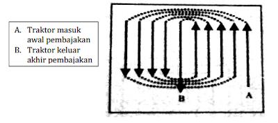 pola tepi tanah