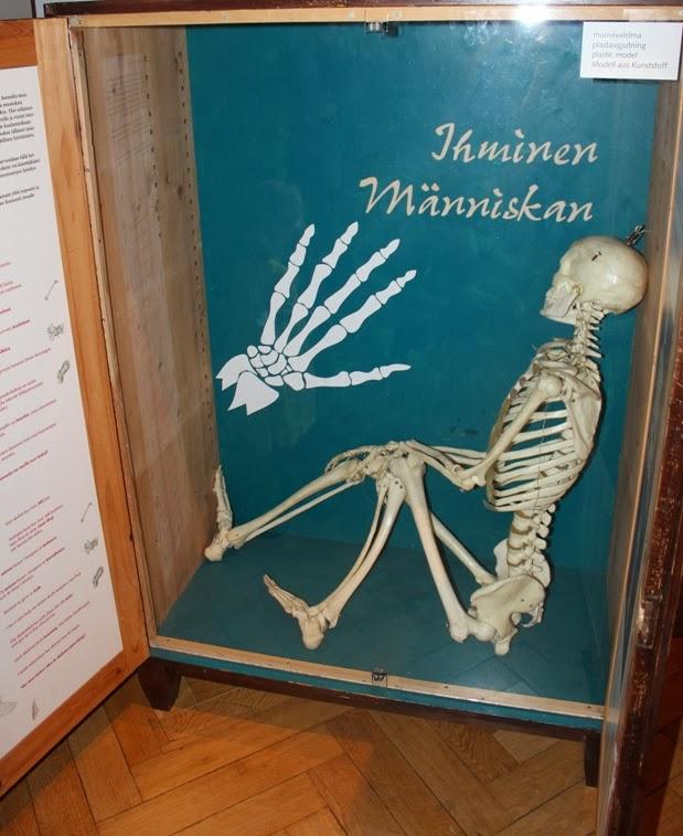 Kalabaliikki Kankaantakana: Lapsiperhe testaa: Luonnontieteellinen museo