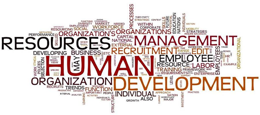 Achieve goals in strategic human resource management
