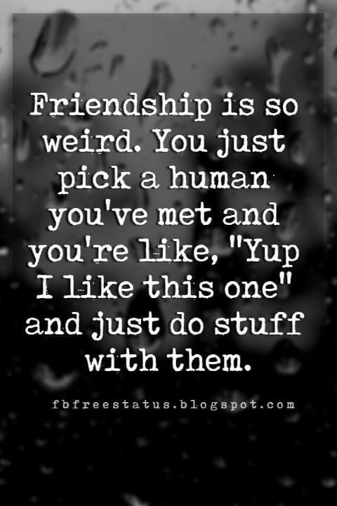 "funny friendship pictures with quotes, Friendship is so weird. You just pick a human you've met and you're like, ""Yup I like this one"" and just do stuff with them."