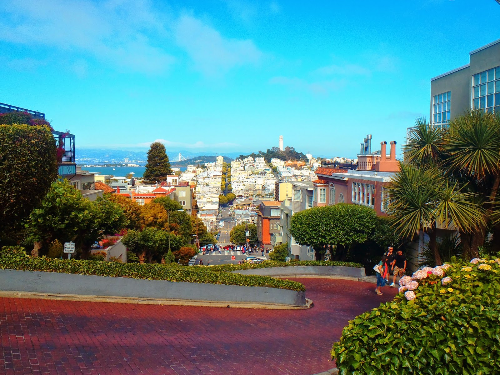 San Francisco's Lombard Street: The Crookedest Street in the World