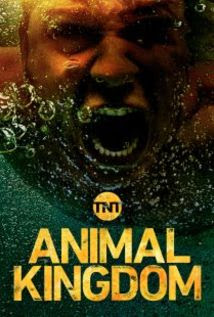 Animal Kingdom - Series With Love - MP4 e MKV 720p Legendado