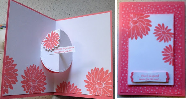 Special Reason Zena Kennedy Independent Stampin Up demonstrator
