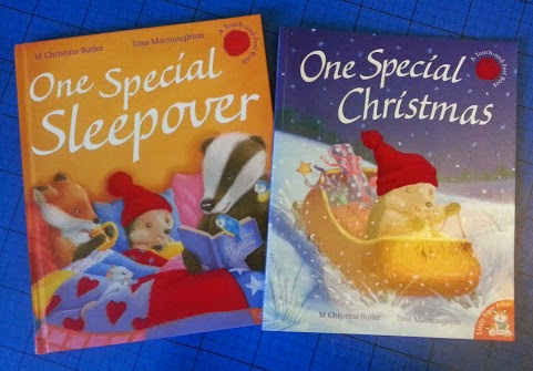 One Special Sleepover and One Special Christmas touch and feel story books for children review