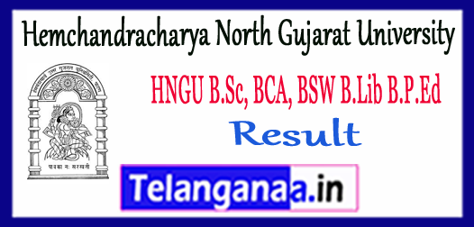 HNGU Hemchandracharya North Gujarat University B.Sc BCA BSW B.Lib B.P.Ed Result 2017-18