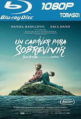 Un cadáver para sobrevivir (2016) BRRip 1080p