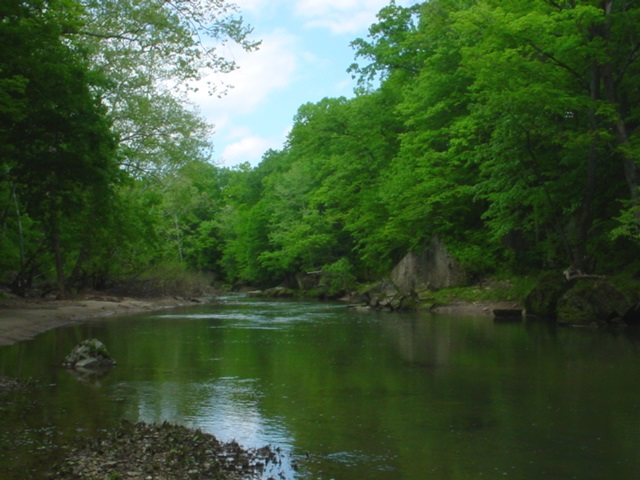Selmier State Forest - Muscatatuck River