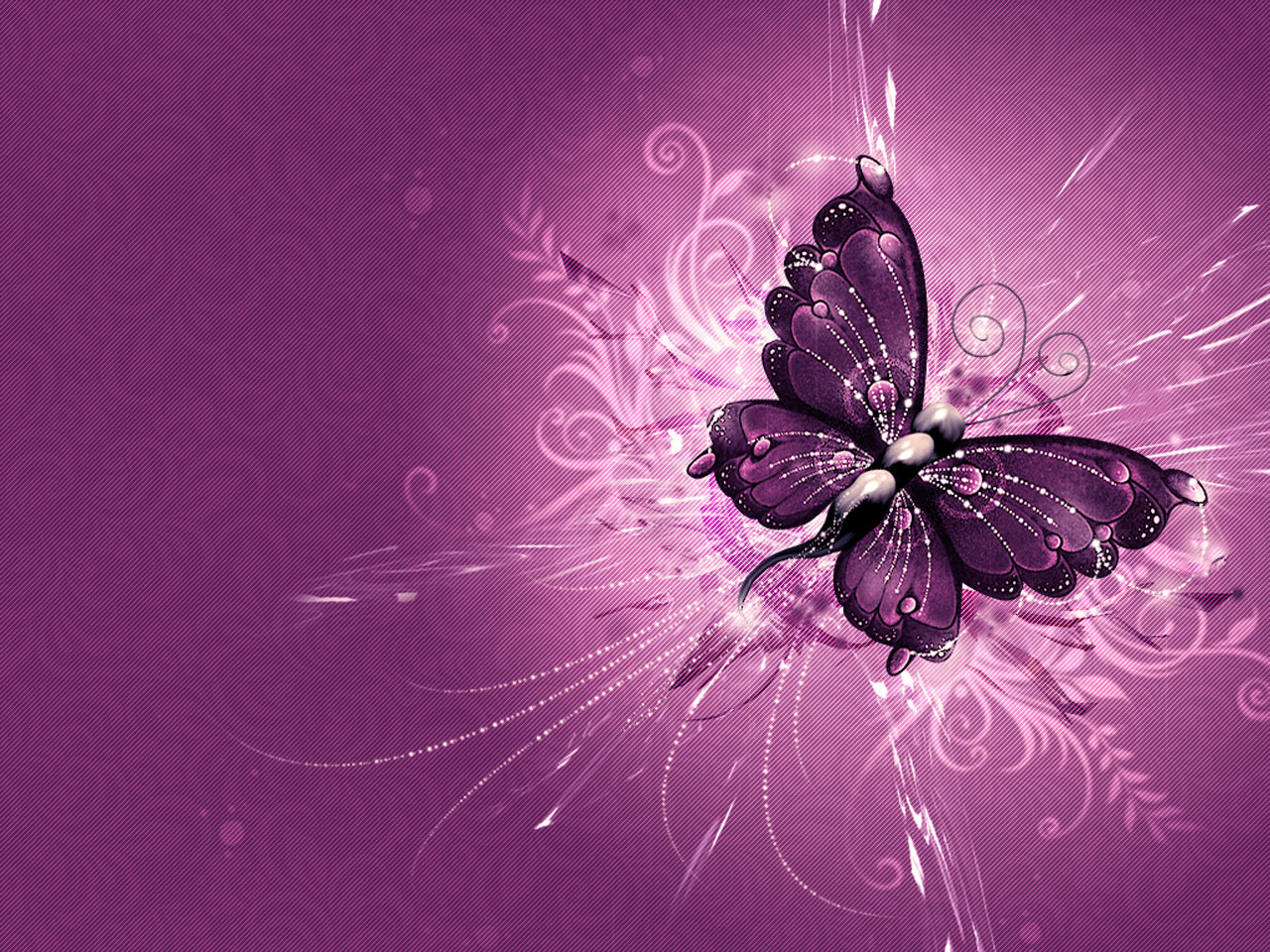 download butterfly wallpaper - photo #3