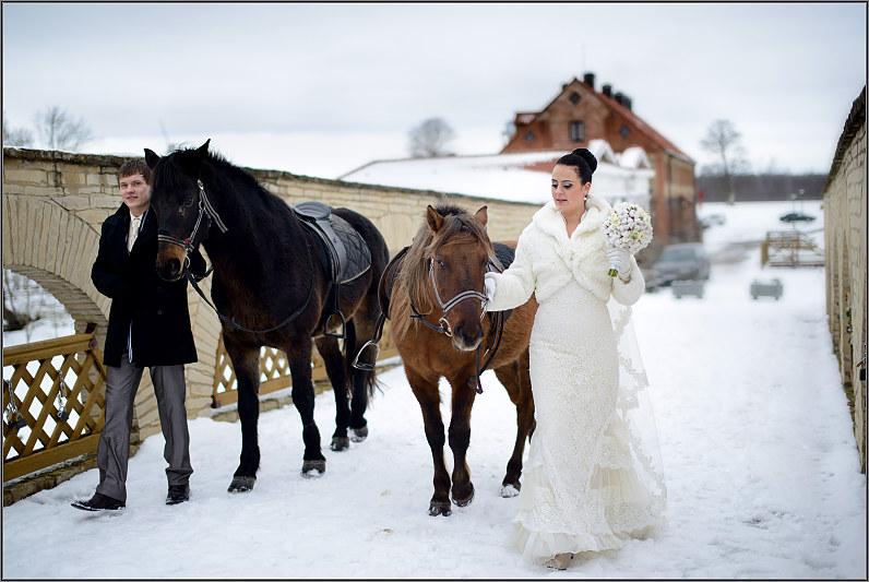 fotosesija su žirgais