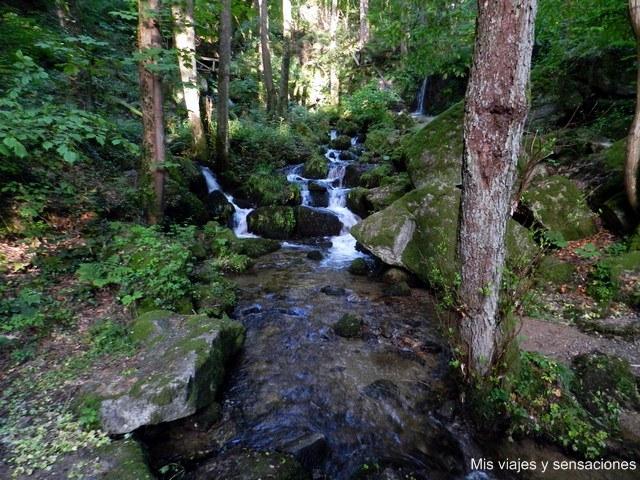 Cascada Gaishöll, Selva Negra, Alemania