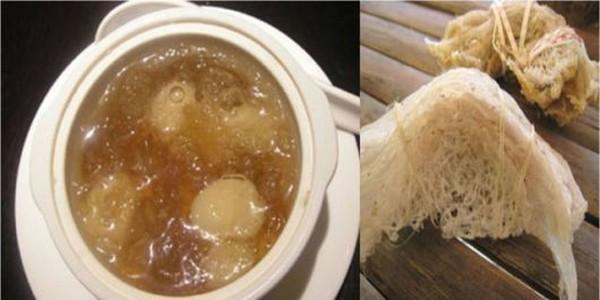 7e10a3d52a26 Το σάλιο των πουλιών δίνουν σε αυτή την σούπα τον ειδικό χαρακτήρα της.  Είναι ένα από τα πιο ακριβά πιάτα που υπάρχουν στον κόσμο και αυτό λόγω της  ...