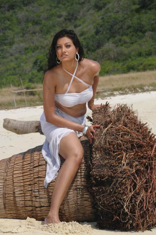 Actress Hamsa Nandini Latest Wet White Dress Spicy Images -1434