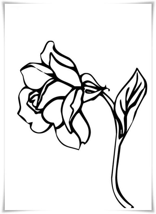 Ausmalbilder zum Ausdrucken: Ausmalbilder Blumen