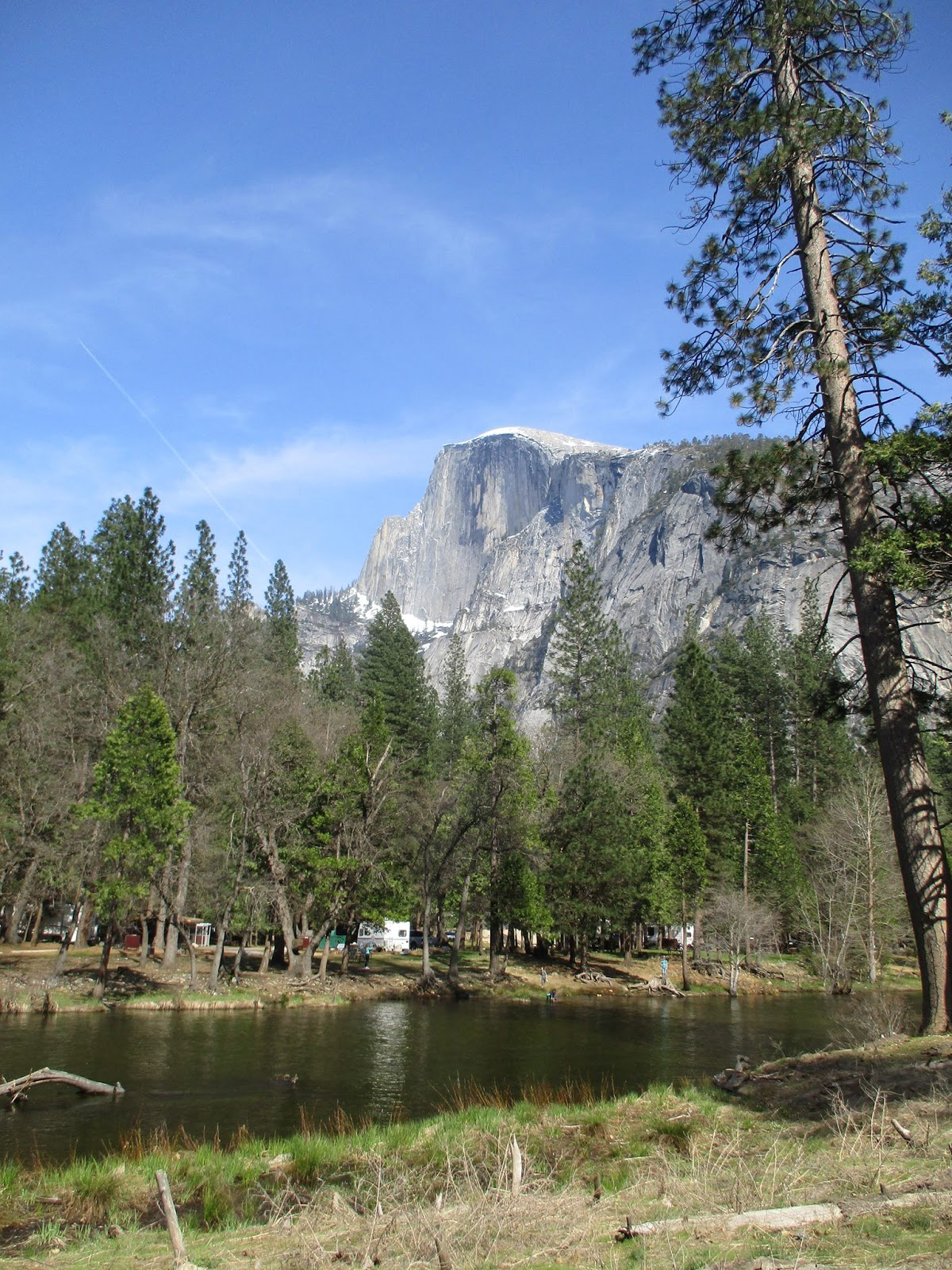 MzTeachuh: Yosemite Trip: No Yogi Bear Or BooBoo But Lots Of
