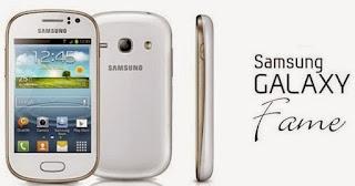 Cara Instal Ulang Samsung Galaxy Fame GT-S6810 Via Odin - Mengatasi Bootloop