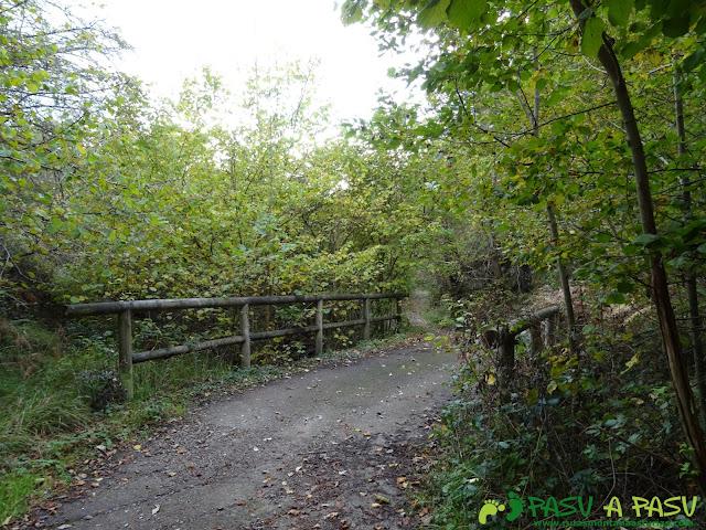 Puente camino a Campiellos