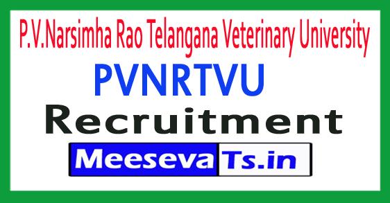 P.V.Narsimha Rao Telangana Veterinary University PVNRTVU Recruitment