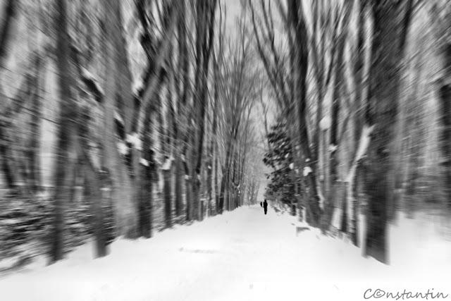 Iaşi - Grădina Copou - blog FOTO-IDEEA