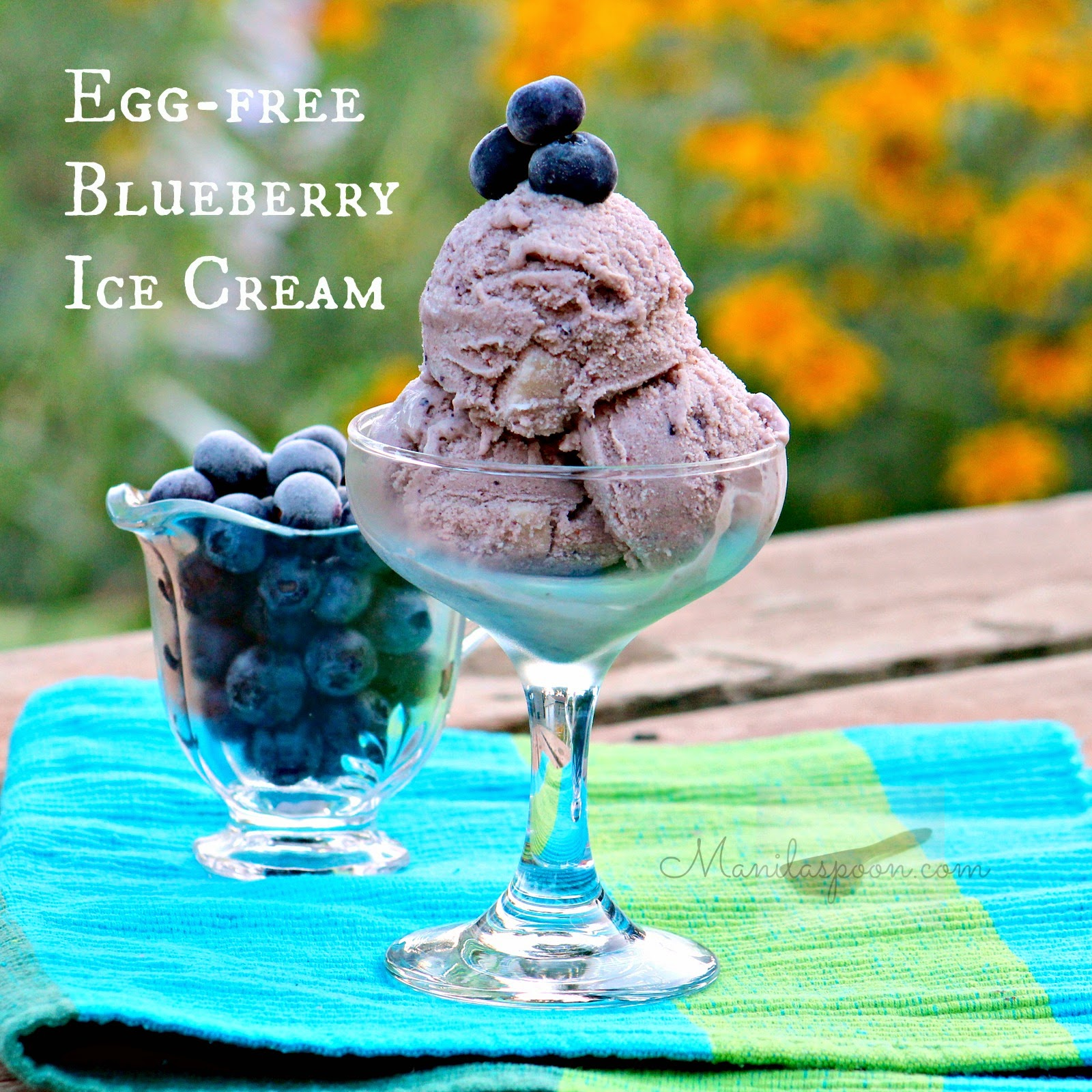 Loaded with juicy fresh blueberries is this yummy and easy recipe for Egg-free Blueberry Ice Cream! #egg #free #blueberry #ice #cream
