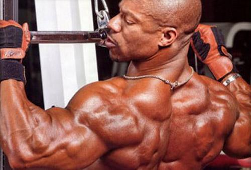 Frugal Fitness Back Bicep Amp Deltoids Workout For