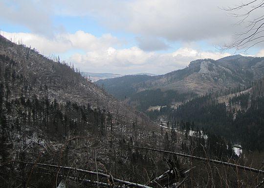 Widok w kierunku wylotu Doliny Kościeliskiej.