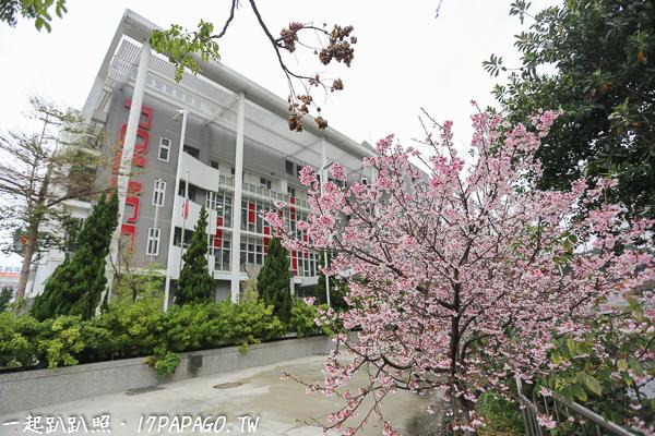 《台中.北屯》四平派出所不只外觀新潮,外面也有漂亮的粉色櫻花
