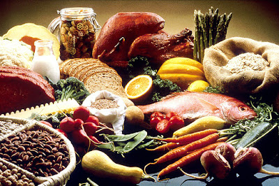 Animal Or Vegetable Protein, Which Is More Effective For A Diet
