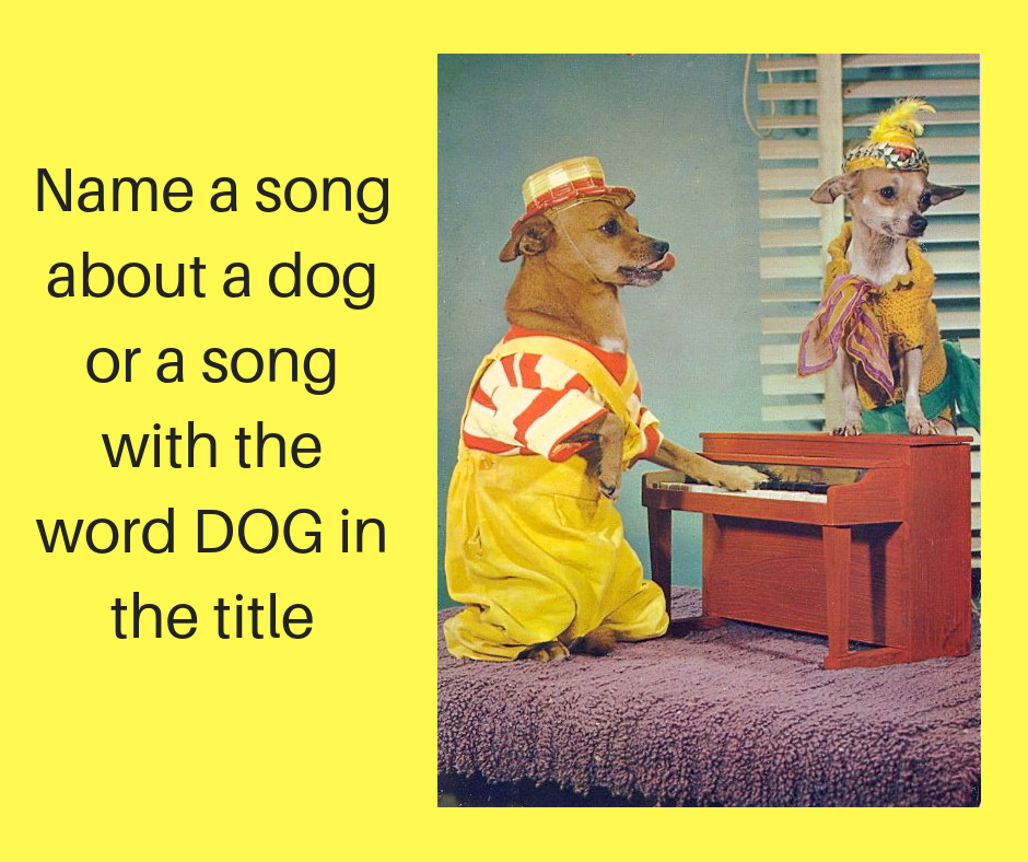 View from the Birdhouse: Dear Abby - Dog Songs -- A New Blog Series!