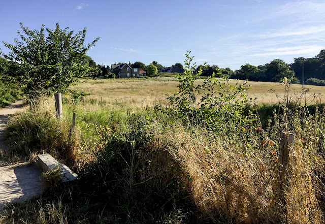 Tong Farm. Walk around the Hawkwood Estate 09, 30 August 2016.