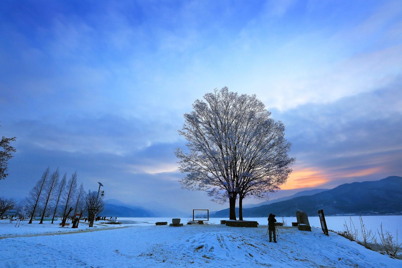 양평 두물머리 겨울전경