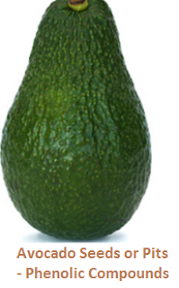 Avocado Seeds or Pits - Phenolic Compounds
