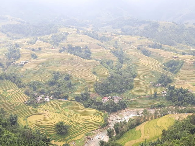 Why is Sapa one of the best choices when you travel around Vietnam?