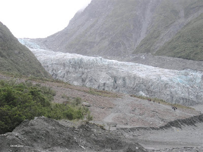 Fox Glacier, New Zealand 2009