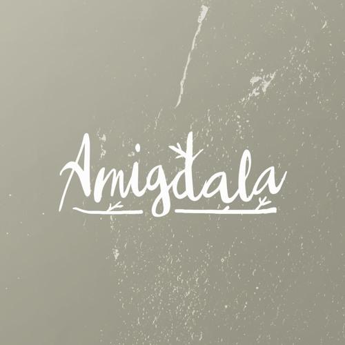 cover album musik Amigdala