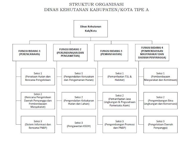 STRUKTUR ORGANISASI DINAS KEHUTANAN KABUPATEN/KOTA TIPE A