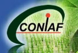 Image result for Consejo Nacional de Investigaciones Agropecuarias y Forestales (CONIAF)