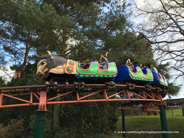 Riding the Buffalo Coaster at Drayton Manor