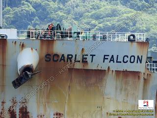 Scarlet Falcon