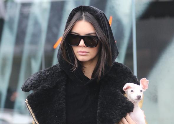 2017-01-02 ケンダル・ジェンナー(Kendall Jenner)ウエストハリウッドにて、ショッピング。