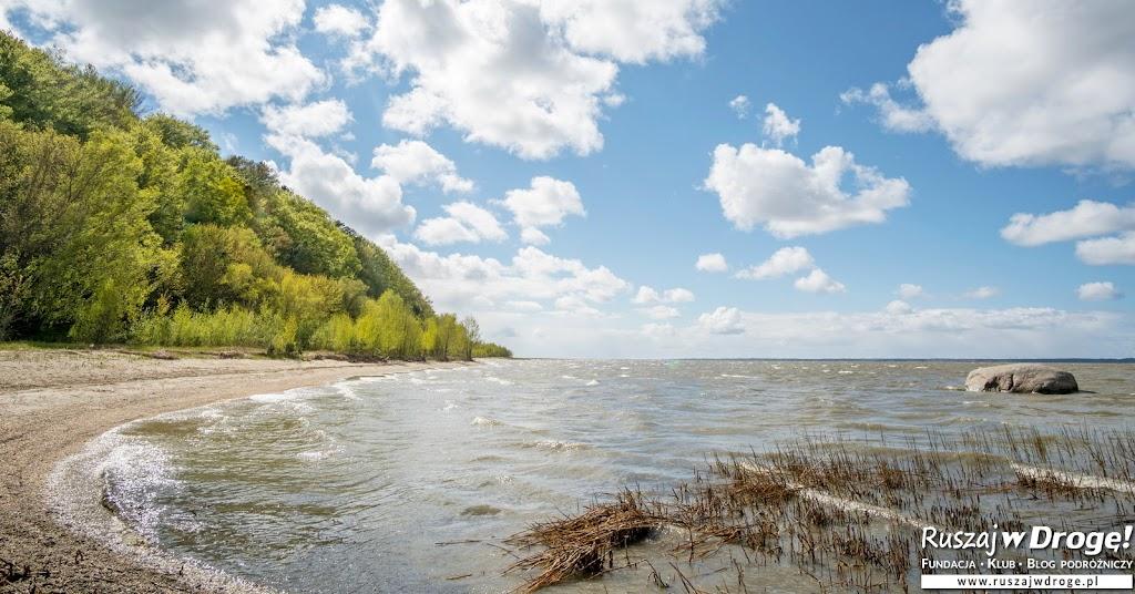 Dzika plaża nad Zalewem Wiślanym - Święty Kamień w Tolkmicku
