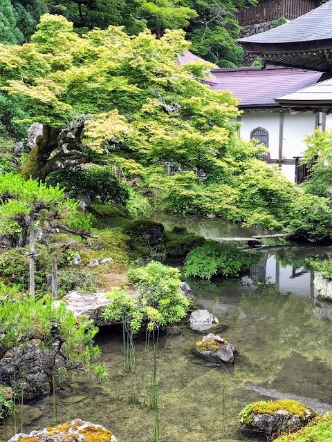 常照皇寺の綺麗な庭画像