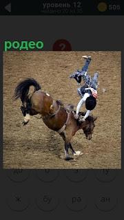 Жокей выпадает из седла лошади подняв задние копыта, родео на арене