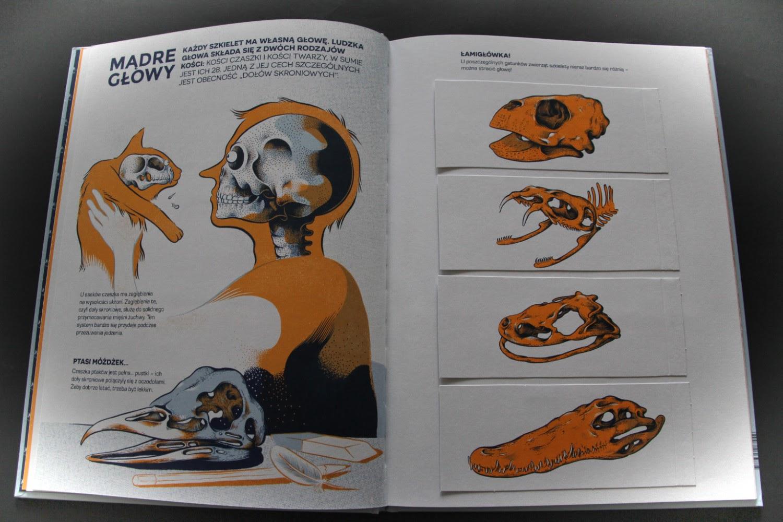 Czyj to szkielet, Henri Cap, Raphaël Martin, Renaud Vigourt