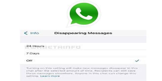 Fitur Baru WhatsApp Hapus Pesan Otomatis 24 Jam