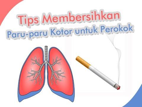 Cara Membersihkan Racun Rokok di Paru-Paru Secara Alami