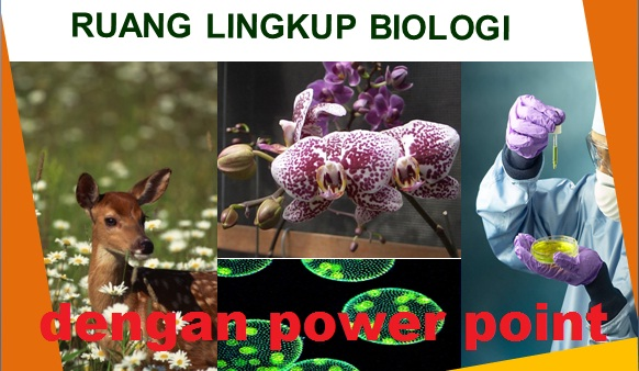 Media Pembelajaran Biologi SMA dengan Power Point