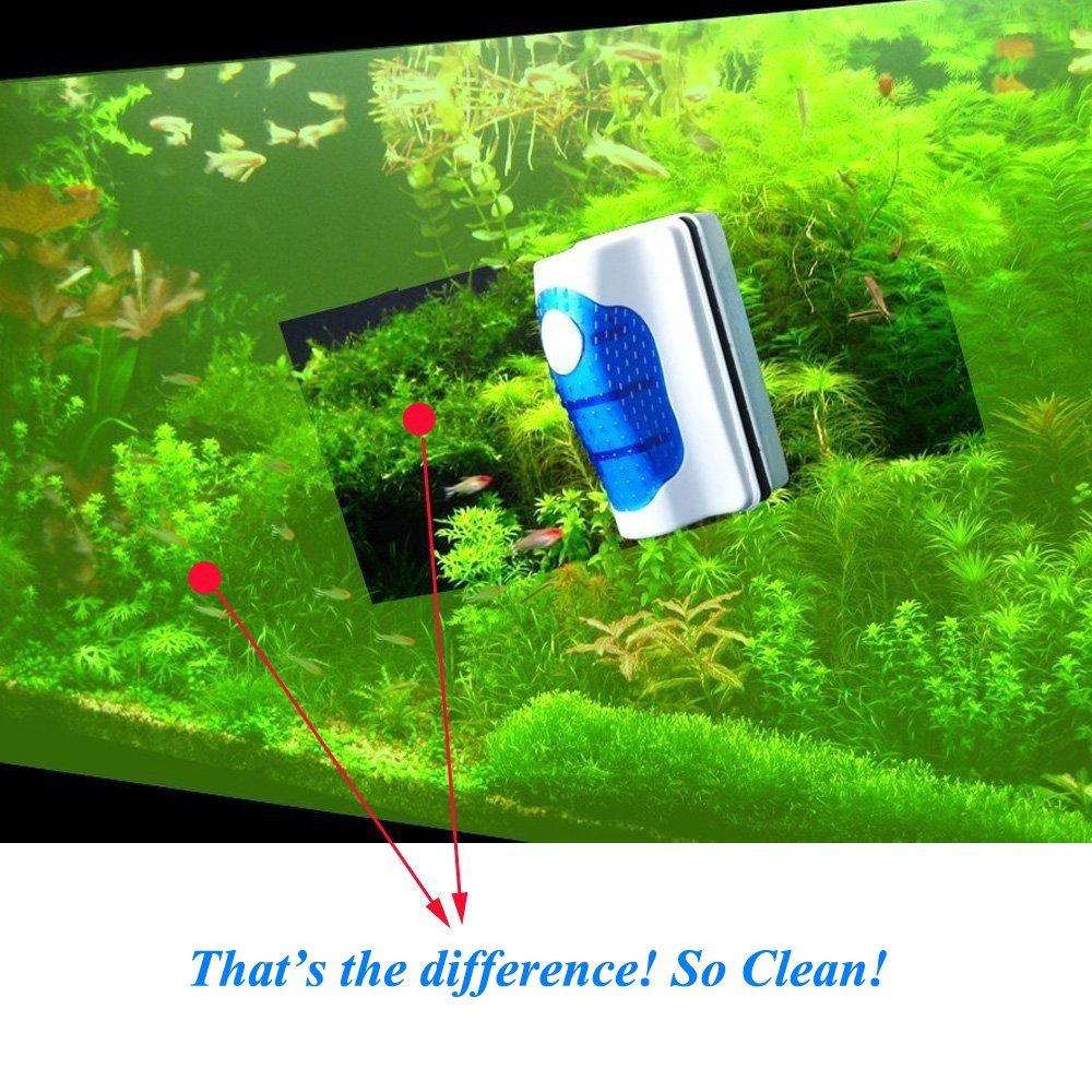 Resultado de imagen para magnet cleaning glass aquarium