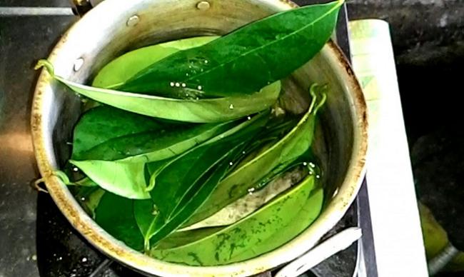 air rebusan daun sirsak untuk kanker